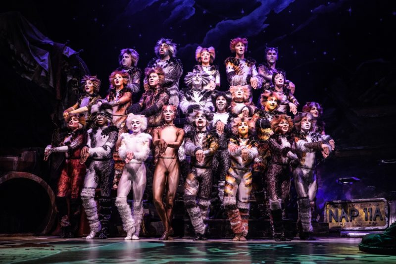 The North American Tour Company of CATS. Photo by Matthew Murphy. 2019