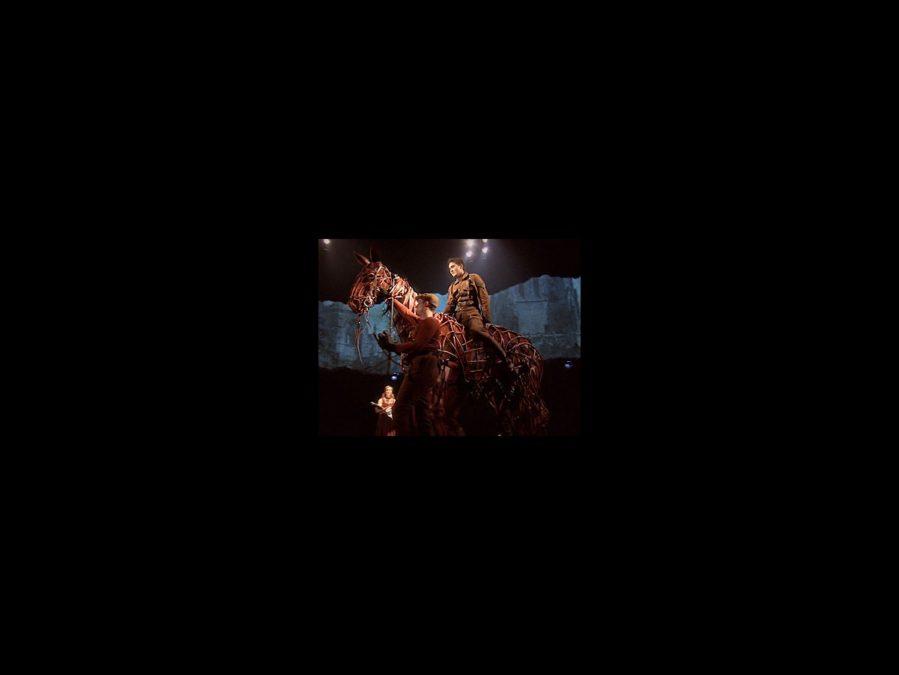 Spotlight On - War Horse - tour - square - 9/12